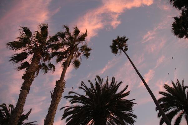 カリフォルニアの素敵な空